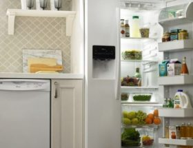 common-refrigerator-repairs